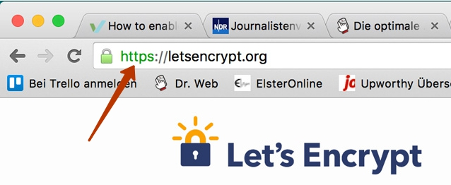 При оплате хостинга вы получаете домен создание сайтов вологда черепаха
